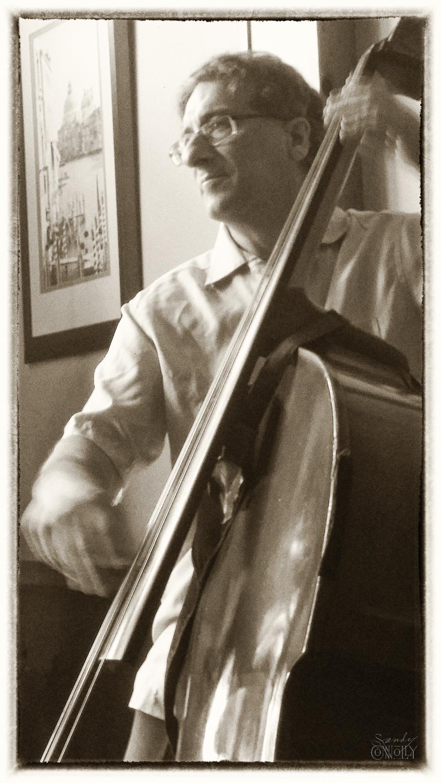 Dave Daddario, bass